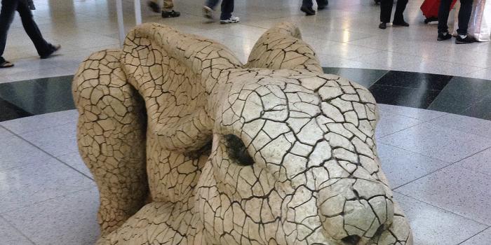 las_vegas_rabbit_at_airport